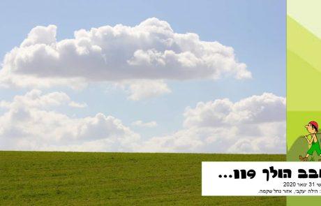 סובב הולך 119…