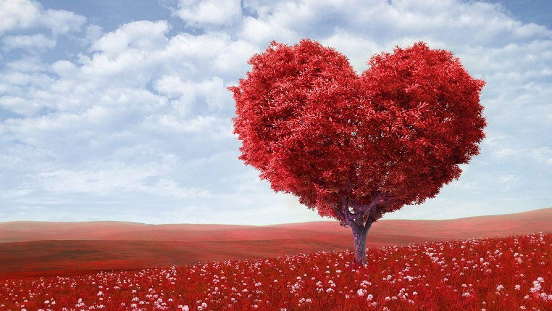 התרמת דם – יום ראשון ה – 26.5